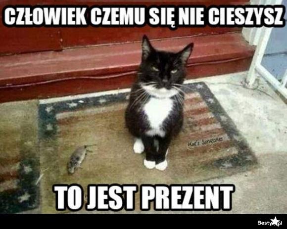 https://img.besty.pl/images/392/30/3923026.jpg