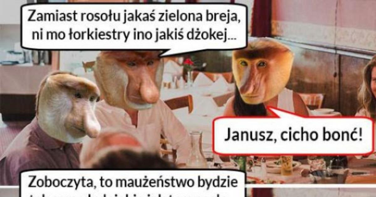 Bestypl Niezadowolony Janusz Na Weselu