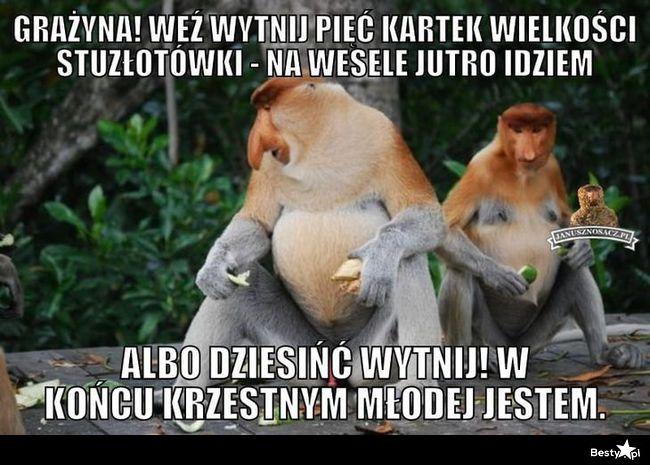 Janusz Tak Bardzo Obrazek Obrazkowo Najlepsze Obrazki