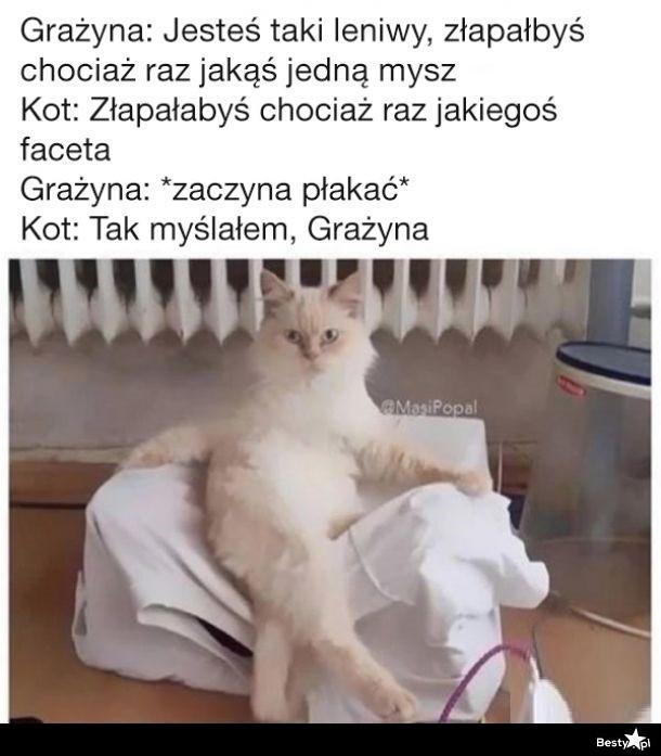 Bestypl Grażyna I Kot