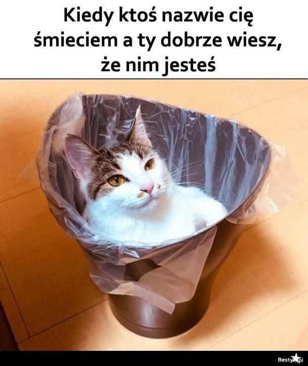 Kiedy ktoś nazwie Cię śmieciem