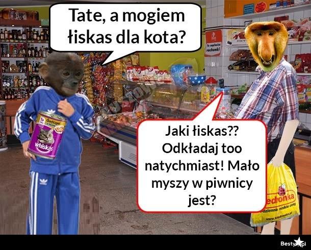 Obrazek Janusz I Pjoter W Sklepie Obrazkowo Najlepsze Obrazki