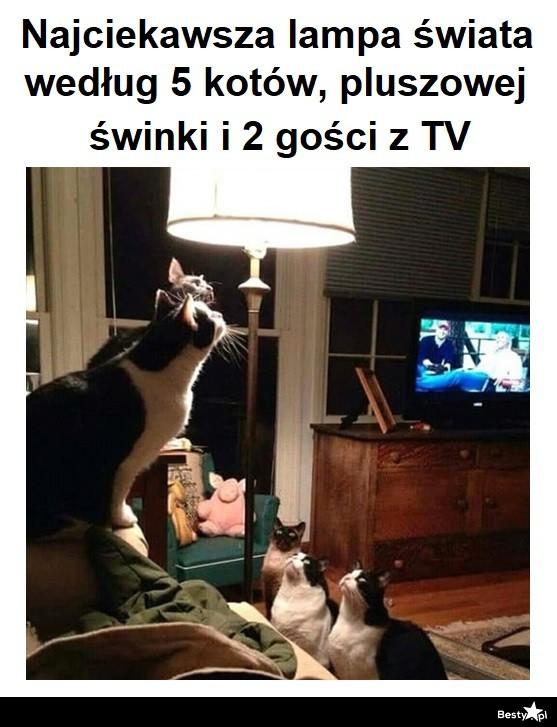 Najciekawsza lampa