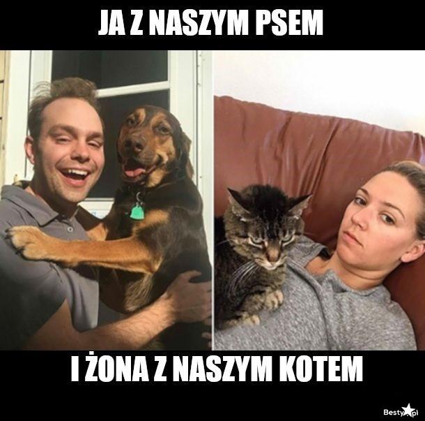 Bestypl