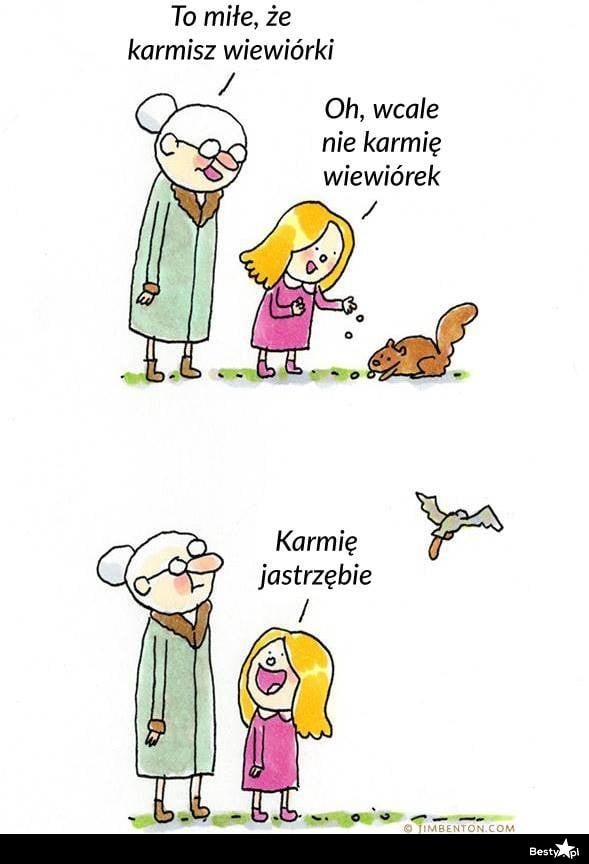 Dokarmianie zwierzątek