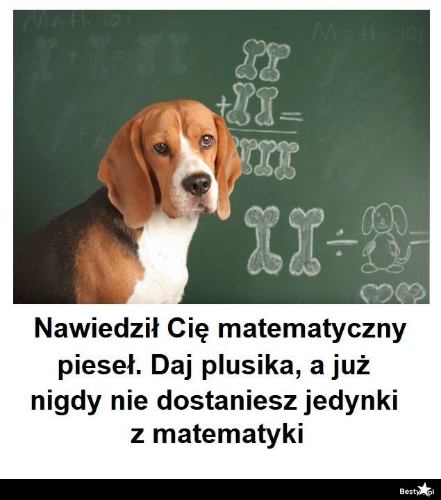 Matematyczny pieseł