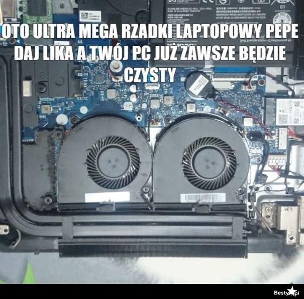 Laptopowy Pepe