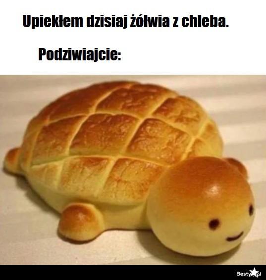 Polajkuj żółwika z chleba
