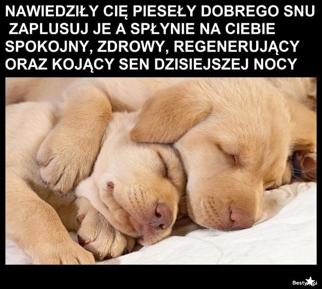 Pieseły dobrego snu