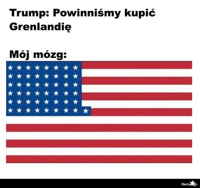 Trump i mój mózg