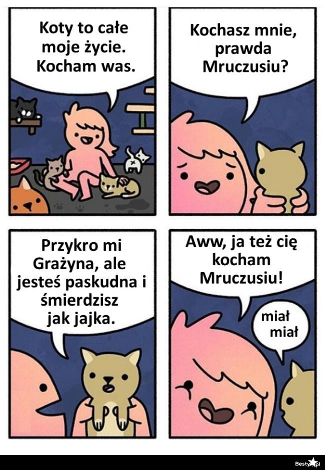 Grażyna i koty