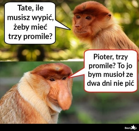 Typowy Janusz i alkohol :D