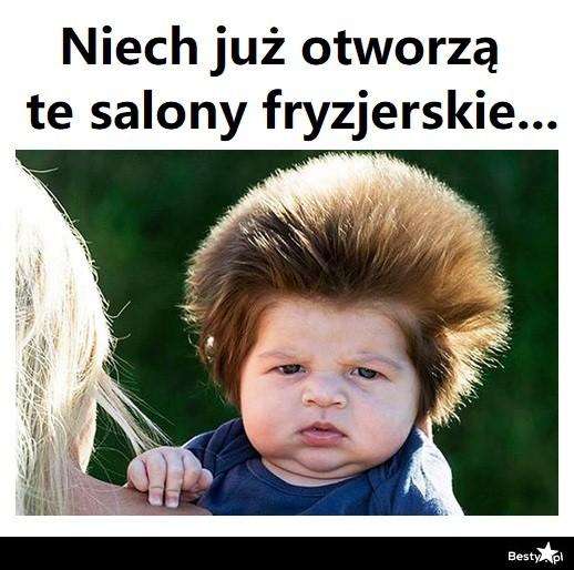 najlepsze memy z branży fryzjerskiej