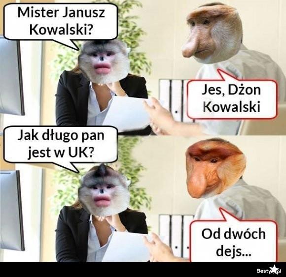 Janusz poliglota :D