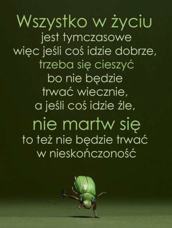 Bestypl 2205942